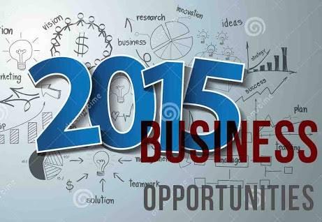 Peluang Bisnis 2015